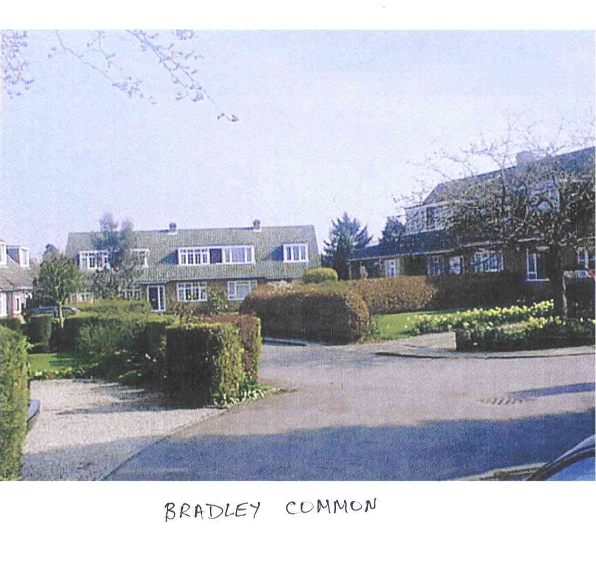 Bradley Common